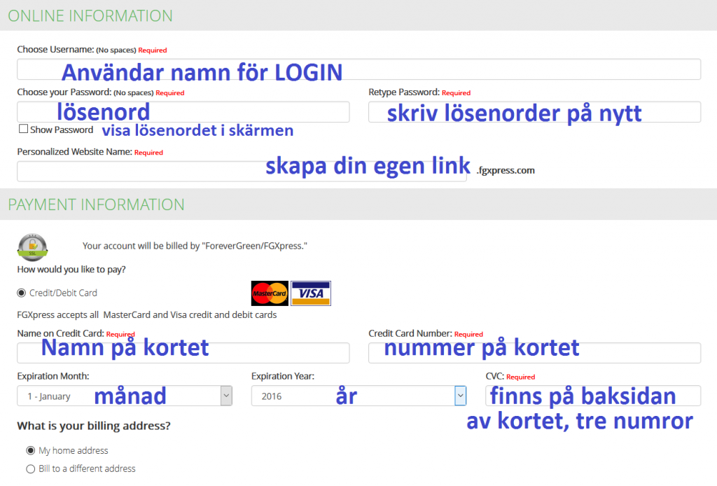 online info and pay card swe